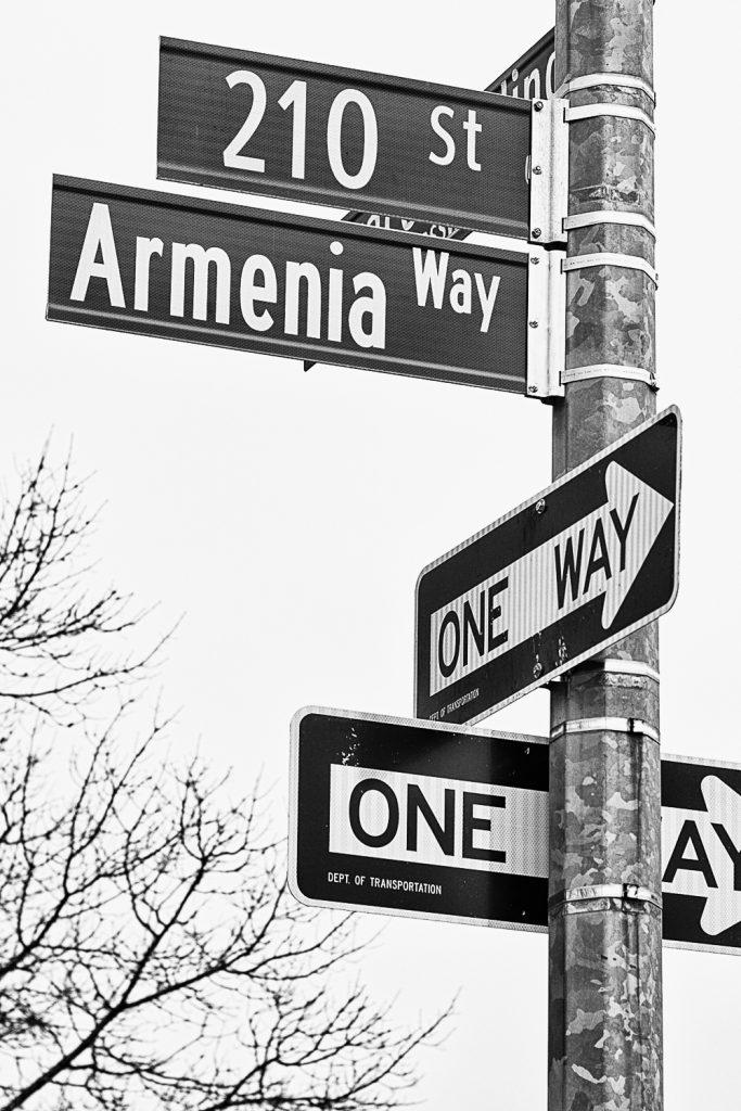 Armenians of NY-15